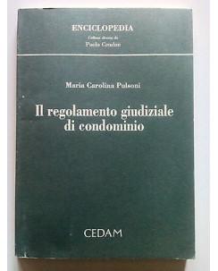 Pulsoni: Il Regolamento Giudiziale di Condominio ed. Cedam 1999 [SR] A64