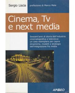 S.Liscia: Cinema,Tv e next media  ed.Apogeo  NUOVO -40% A54